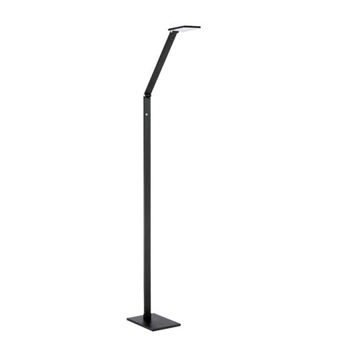 Reco Black LED Floor Lamp