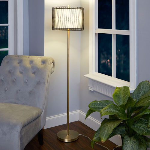 Roxie Floor Lamp with Wire Cage Accent