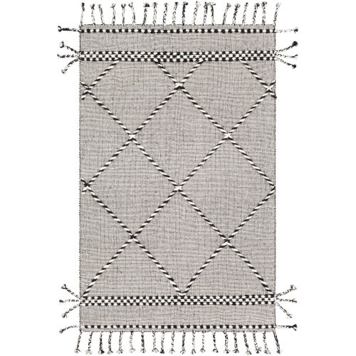Apache Black and Cream Rectangle 2 Ft. x 3 Ft. Rug
