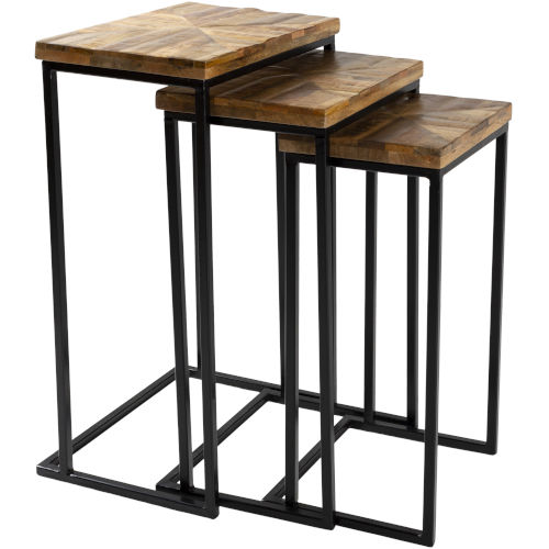 Troyes Natural and Black Nesting Accent Table, 3 Pieces