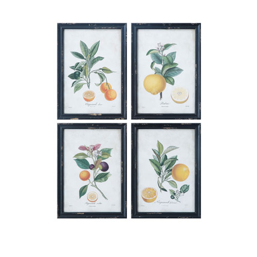 Collected Notions Images Wood Framed Wall Decor - Set of 4