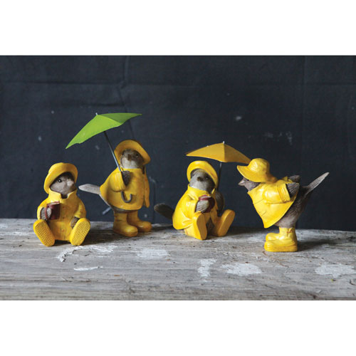 Brown Bird in Raincoat, Set of Four