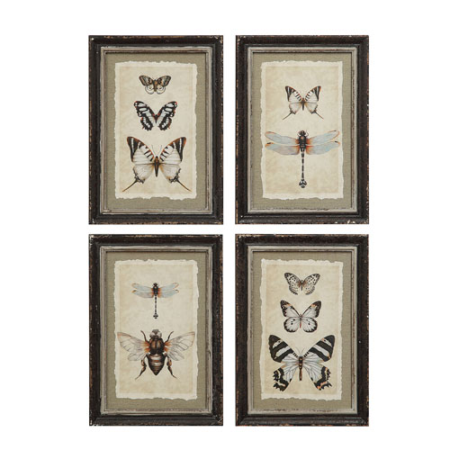 3R Studio Vintage Insect 13.5 In. Wood Framed Print, Set of Four