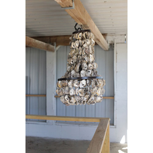 Round Oyster Shell Chandelier