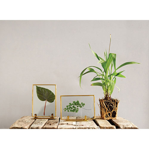 Glass 5 x 7 In. Photo Frame with Brass Rim and Stand