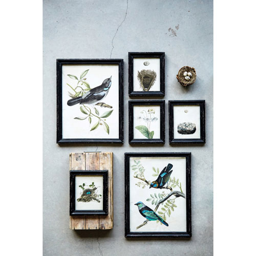 Bird Image with Black Wood Frame Wall Plaque, Set of Two