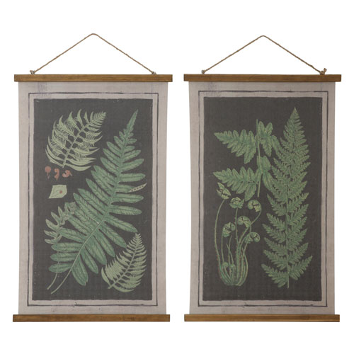 Scroll with Fern Chart, Set of Two