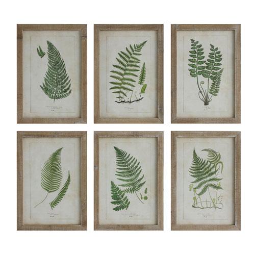 Fern Image Wood Wall Plaque, Set of Six