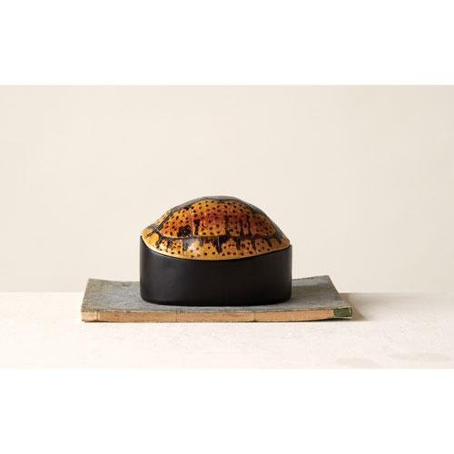 Turtle Shell Box