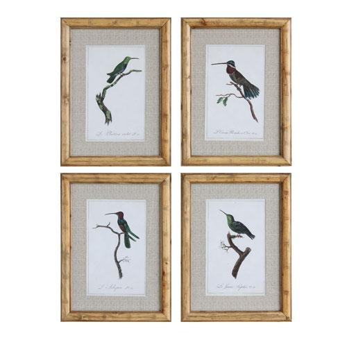 3R Studio Framed Vintage Hummingbirds, Set of Four