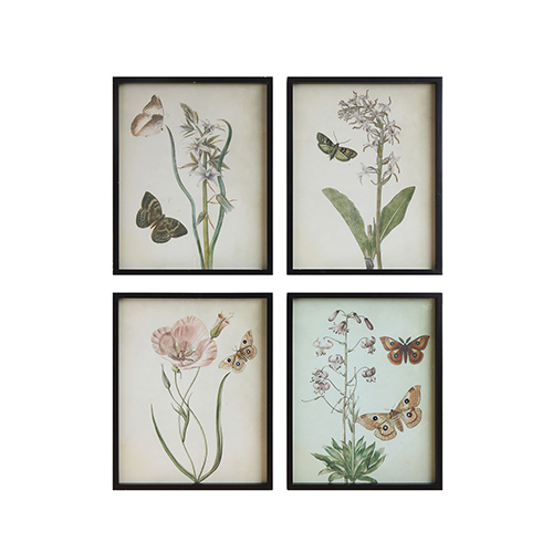 Framed Flowers and Butterflies Wall Décor, Set of Four