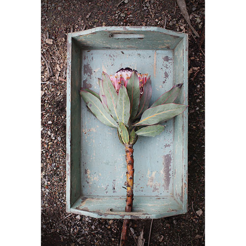 Distressed Green Wood Tray with Handles