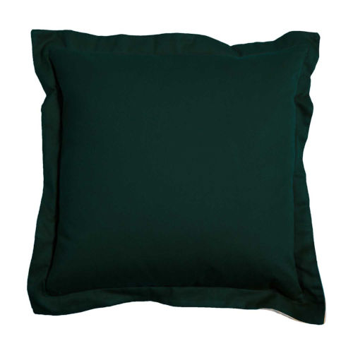 Mallard and Almond 17 x 17 Inch Pillow with Double Flange
