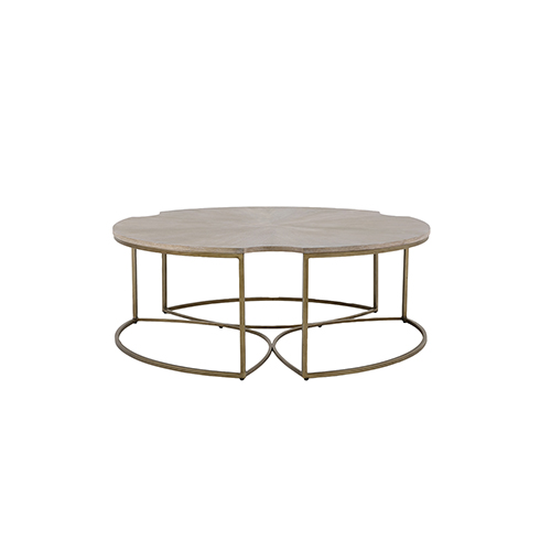 Zelda Cerused Oak and Light Bronze Coffee Table