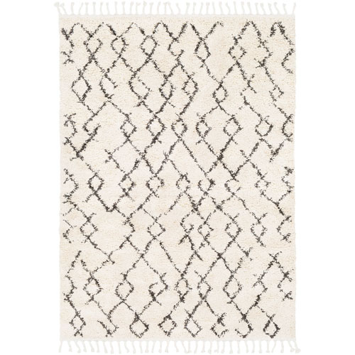 Berber Shag Beige Rectangle: 2 Ft. x 3 Ft. Rug