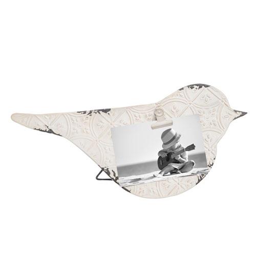 Bird Photo Clip