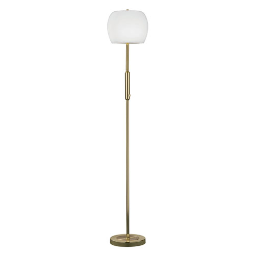Pear Polished Brass LED Floor Lamp