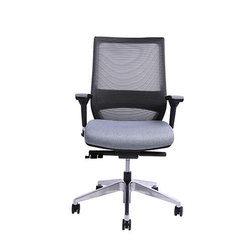 Gray CEO Ergonomic Mid Back Chair