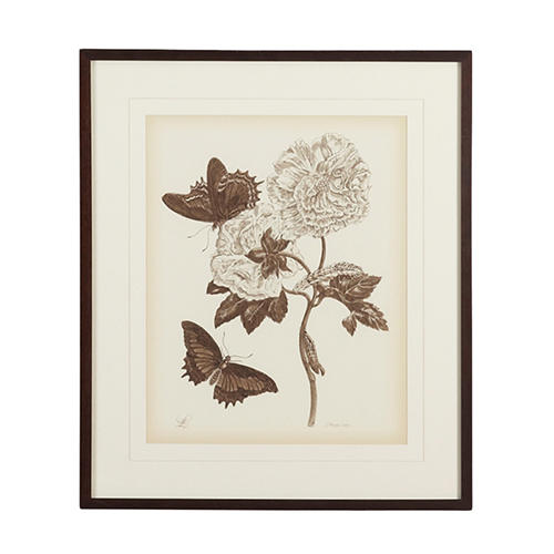 Bronze Nature Sepia IV Print