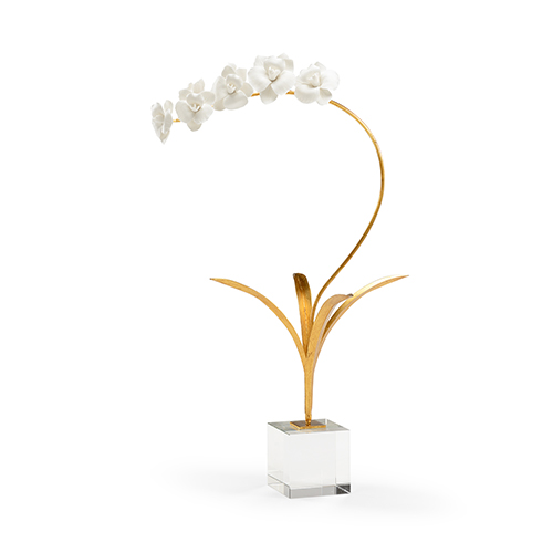 Bradshaw Orrell Gold Orchid in Stand
