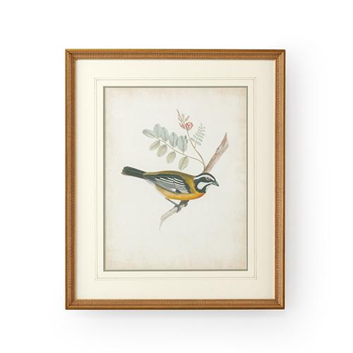 Gold Delicate Birds V Print