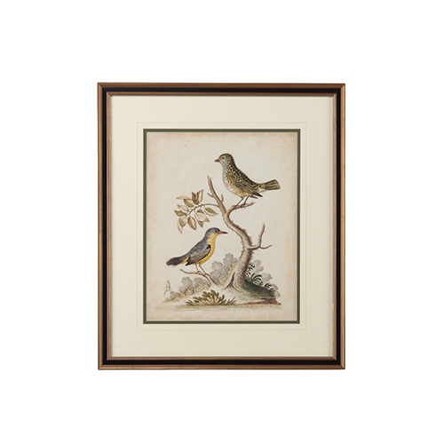 Black Edwards Bird Pairs VII Print
