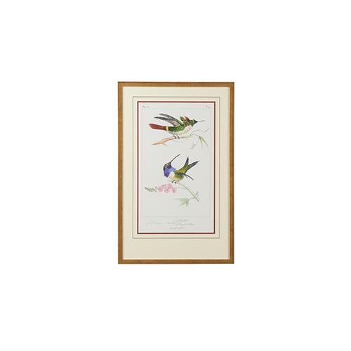 Gold Lemaire Hummingbirds I Print
