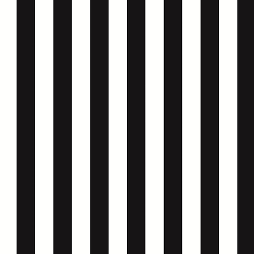 Regency Stripe Black and White Wallpaper