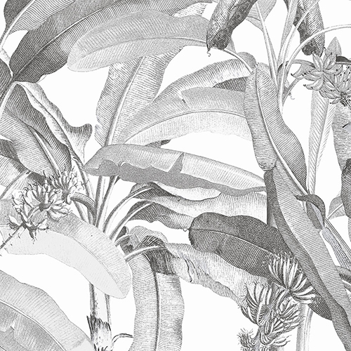Black and White Polynesian Leaves Wallpaper