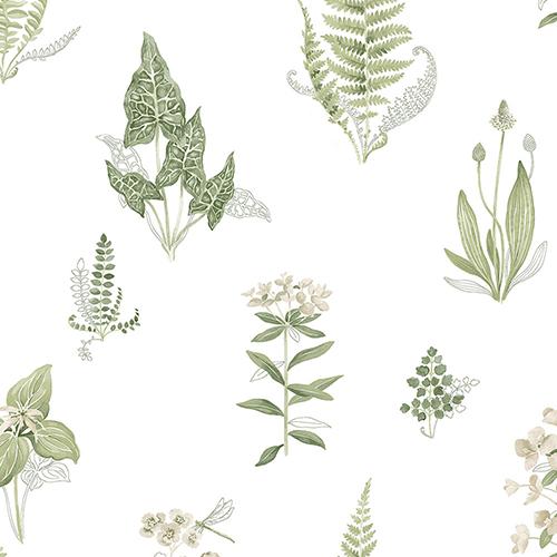 Green and Beige Ferns Wallpaper