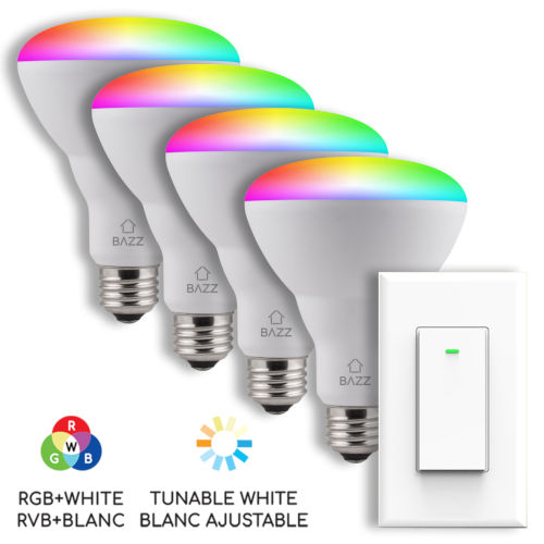 Matte White RGB LED Bulb with Switch, Pack of 4