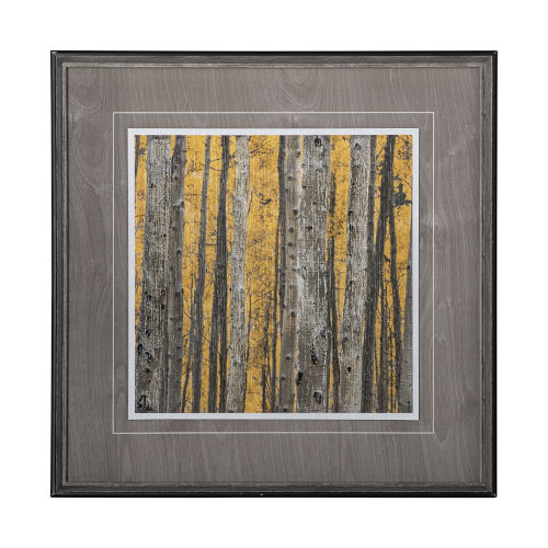 Yellow Aspen Trees 3 Wall Art
