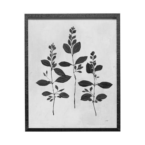 Black Botanical Study IV Wall Art