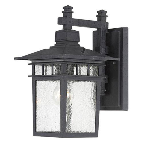 251 First Hayden Textured Black 14-Inch One-Light Outdoor Wall Sconce with Seeded Glass
