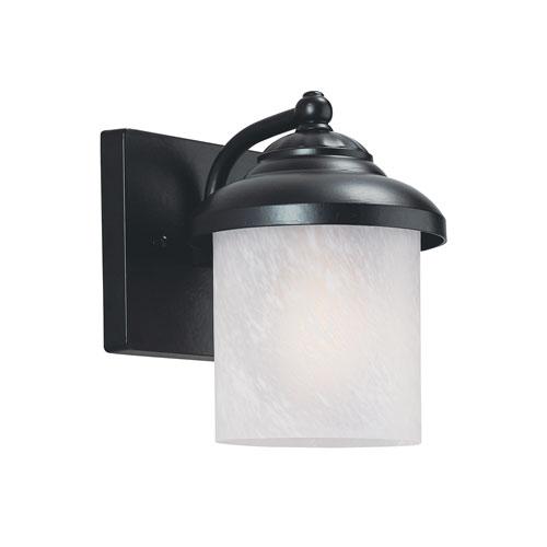 Anita Black Energy Star Dusk to Dawn LED Outdoor Wall Lantern