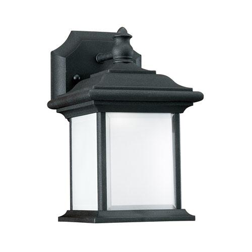 Charles Black Energy Star 10-Inch LED Outdoor Wall Lantern