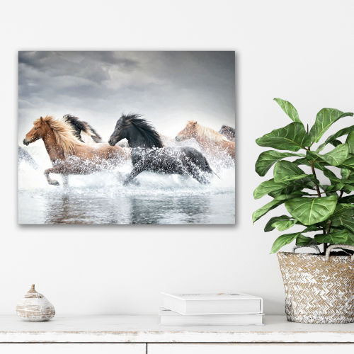 Horse Run V Gallery Wrapped Canvas