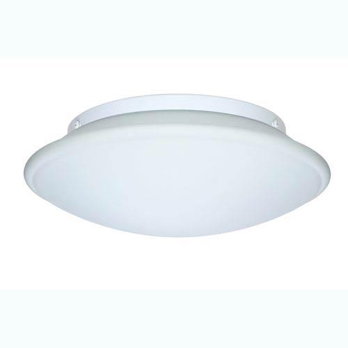 Series 943 Large Interior Ceiling Light