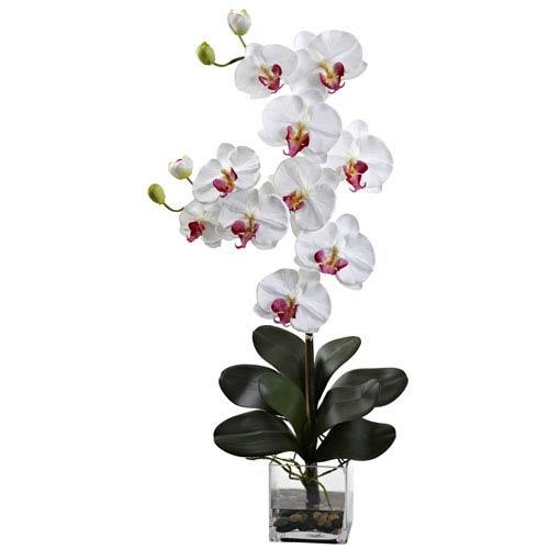 Nearly Natural White Double Giant Phalaenopsis with Vase