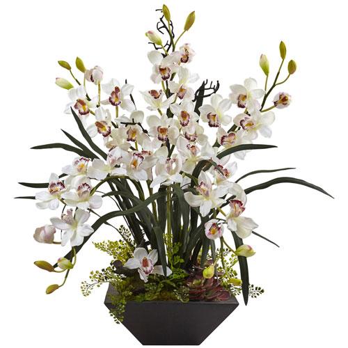 Cymbidium Orchid with Black Vase