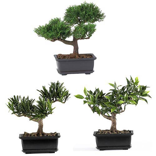 8.5-Inch Bonsai Silk Plant Collection, Set of Three
