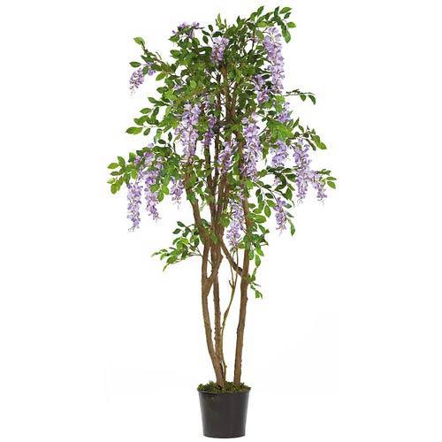 5-Foot Wisteria Silk Tree