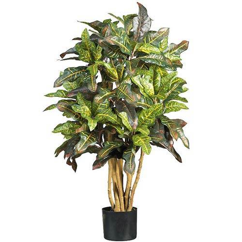 3-Foot Croton Silk Tree