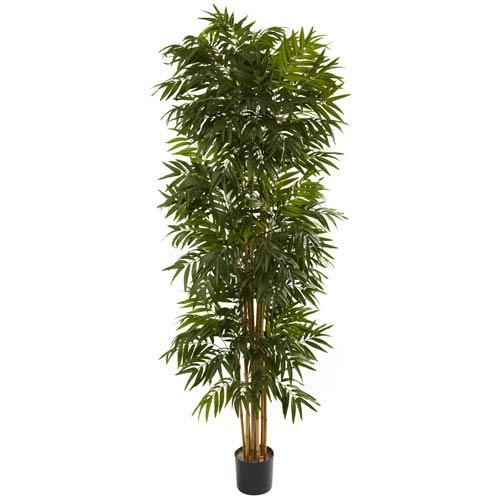 Green 7.5 Foot Phoenix Palm Tree
