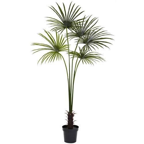 Green 7 Foot Fan Palm Tree