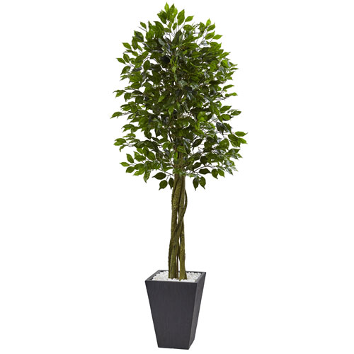 6.5 Ft. Ficus Tree with Slate Planter UV Resistant