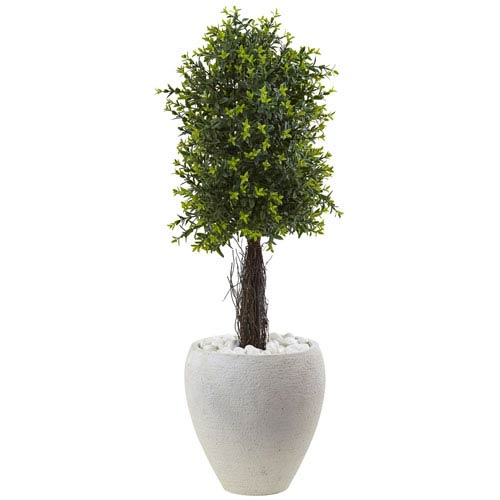 40-Inch Ixora Topiary with White Planter UV Resistant