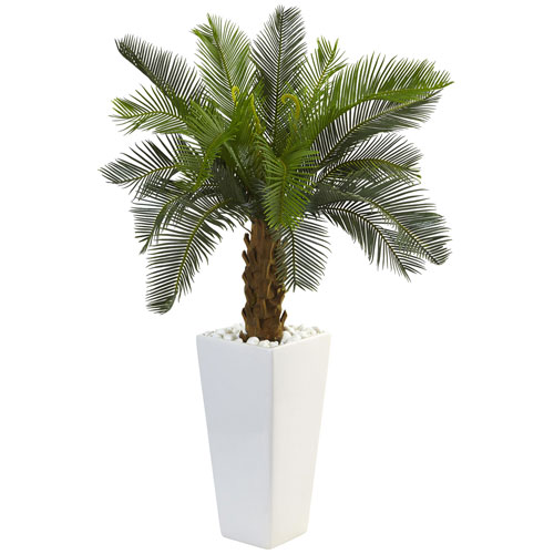 3 Ft. Cycas Tree in White Tower Planter
