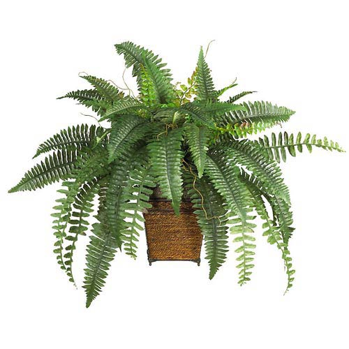 Nearly Natural Boston Fern Silk Plant with Wood Wicker Basket