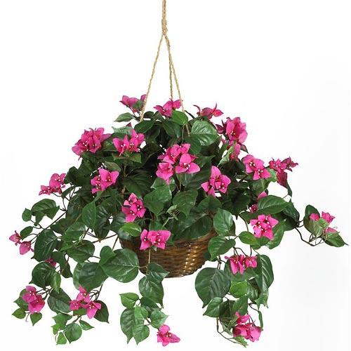 Bougainvillea Silk Plant Hanging Basket Silk Plant
